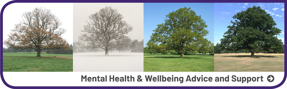 Mental Health & Wellbeing Advice